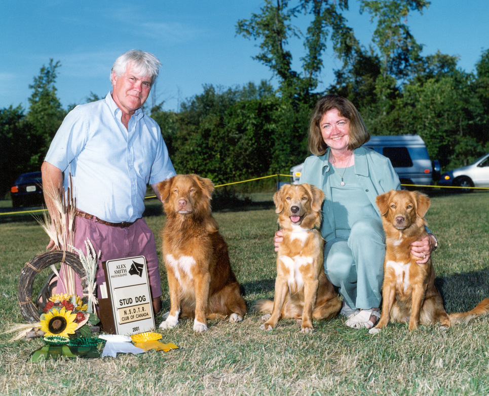 2001 Canadian National Stud dog class